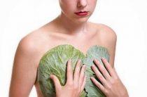 Растет ли от капусты грудь? Польза и мифы в бабушкиных сказках